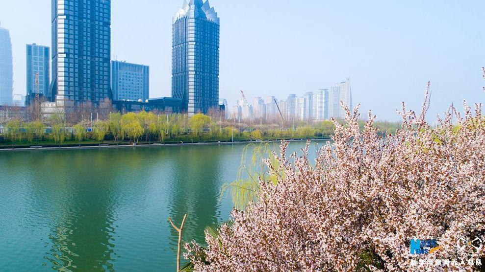 【航拍】郑东新区:半城碧水半城花