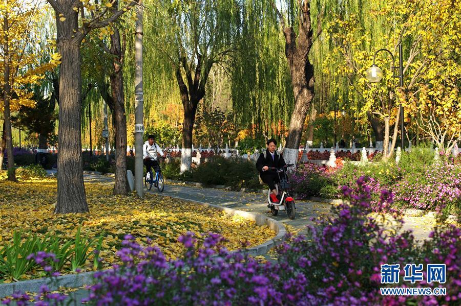 (环境)(5)赏秋清华园