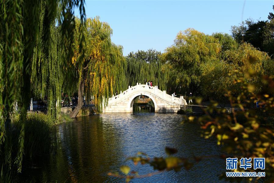 (环境)(6)赏秋清华园