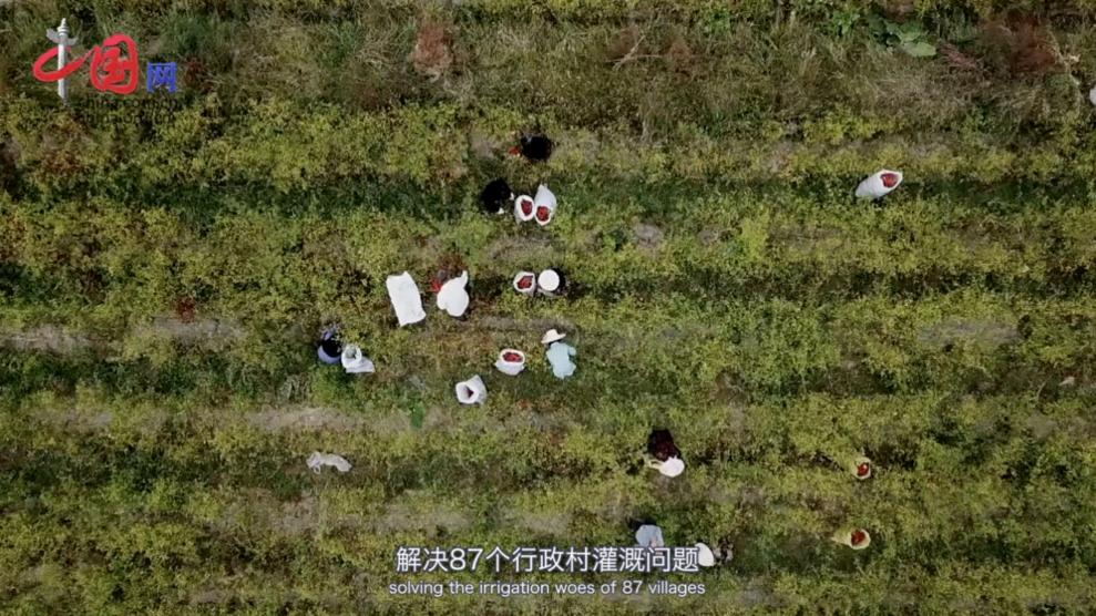 中国梦黄河情:母亲河的爱与被爱